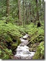 90px-Creek_on_Larch_Mountain-Oregon